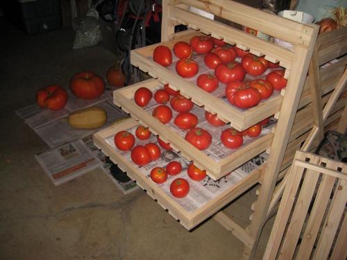 Как сохранить свежие помидоры на зиму в банке порезанные. Как сохранить помидоры на зиму в домашних условиях: секреты и способы хранения свежих томатов до весны