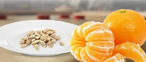 Мандарин домашний уход. Посадка мандарина