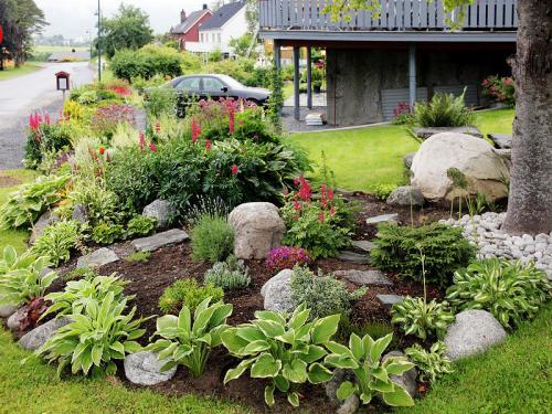 Для ленивых растения. Основные принципы устройства ленивого сада