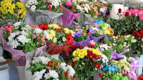 Цветок-покровитель по Знаку Зодиака. Ваш цветок-покровитель по Знаку Зодиака