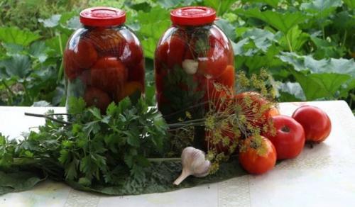 Свежие помидоры на зиму в банках без воды. Вкусные помидоры на зиму, пальчики оближешь — 28 лучших рецептов заготовки помидоров