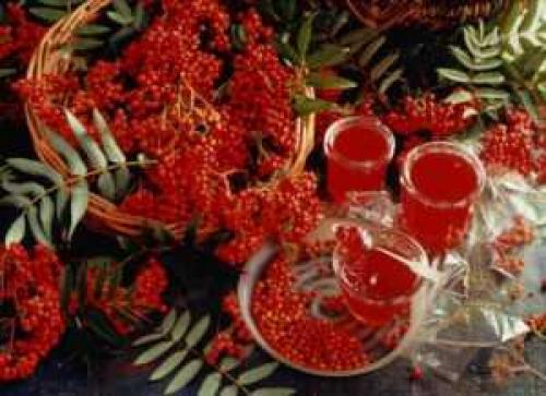 Мармелад из красной рябины. Приготовьте сок, квас, желе или мармелад из красной рябины!